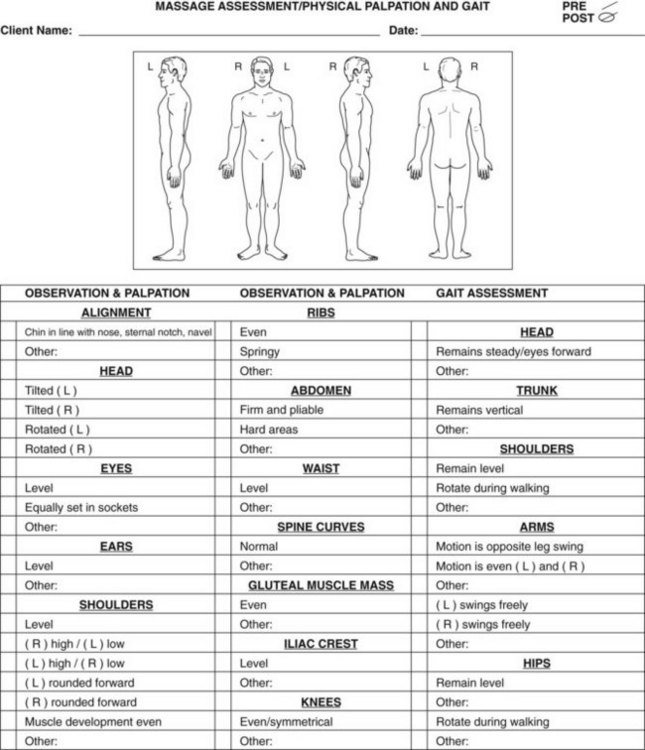 FIGURE 10 1 Physical Assessment Form. (Feel Free To Copy This Form To Use  As An Assessment Tool.) (From Fritz S: Mosbyu0027s Fundamentals Of Therapeutic  Massage ...