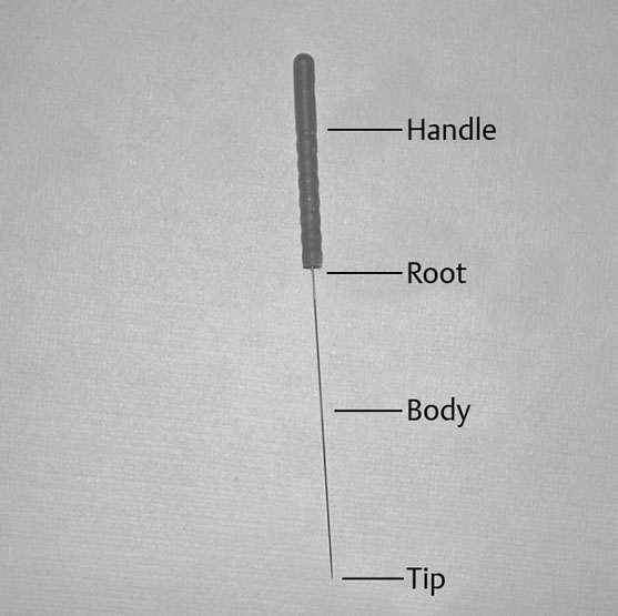 The Needle | Musculoskeletal Key