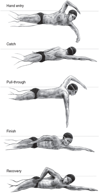 Image result for swimming phases