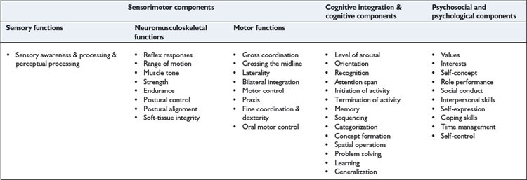Occupational performance and adaptation models | Musculoskeletal Key