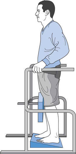 Figure 62 Standing In A Frame The Wedge Placed Under Feet Provides An Additional Stretch To Ankle Plantarflexor Muscles